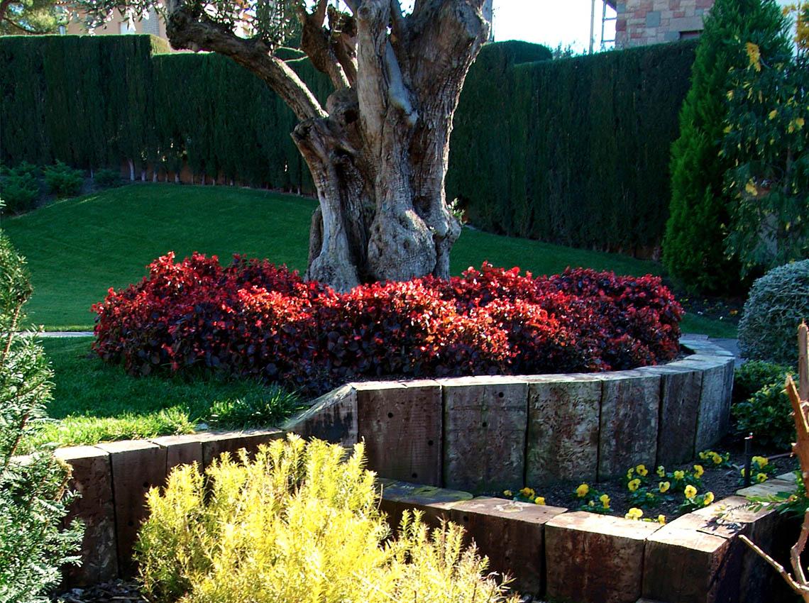 Dise o de jard n con terrazas jard n con varios niveles for Jardines particulares