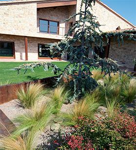 Servicios de jardinería y Diseño personalizado de jardines