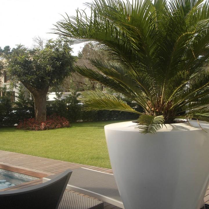 Paisajismo para piscinas piscinas decoracin de jardines for Paisajismo jardines con piscina