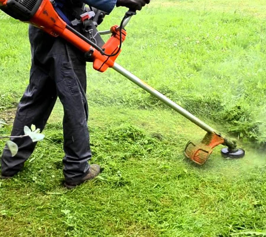 Desbroces de jardines y fincas
